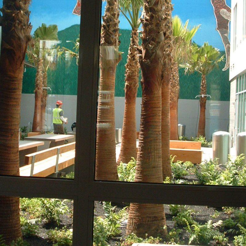 Parcel G Landscaping Project